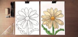 Si të vizatojmë një lule normale
