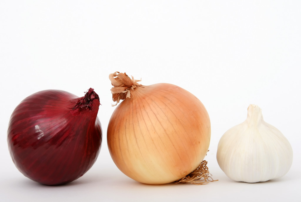 Onions and garlic isolated on white, macro close up with copy-space, copy space.