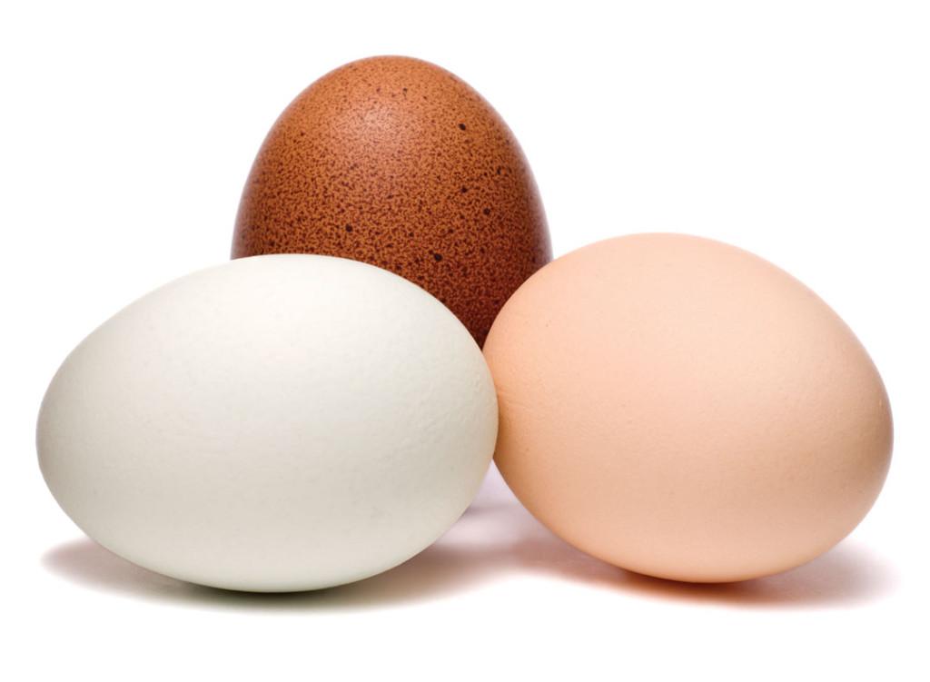 Eggs-May-13-p28