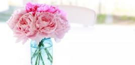 Si të mbajmë lulet natyrale të freskëta